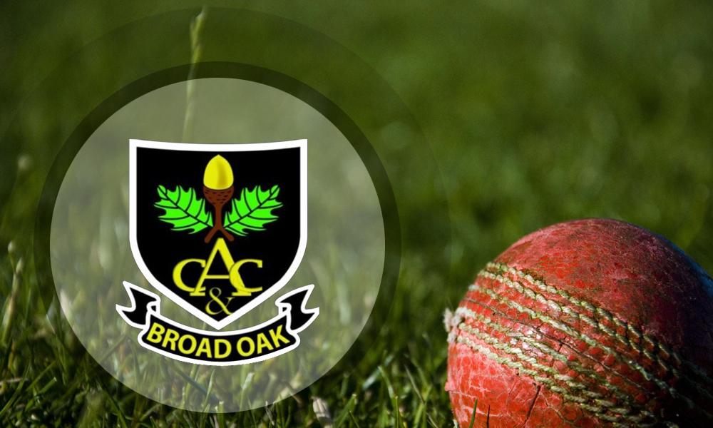 Match Report 1st X1 v Broad Oak (a) - 3 August